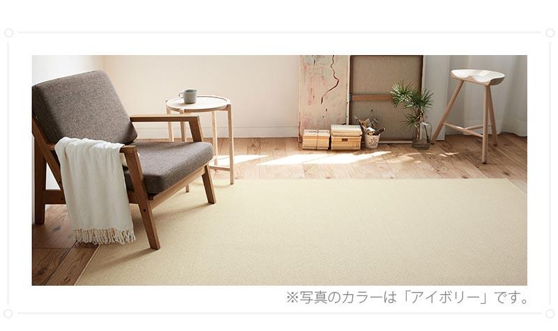100サイズ 安心のアース防ダニ加工高機能カーペット【アスタナ】