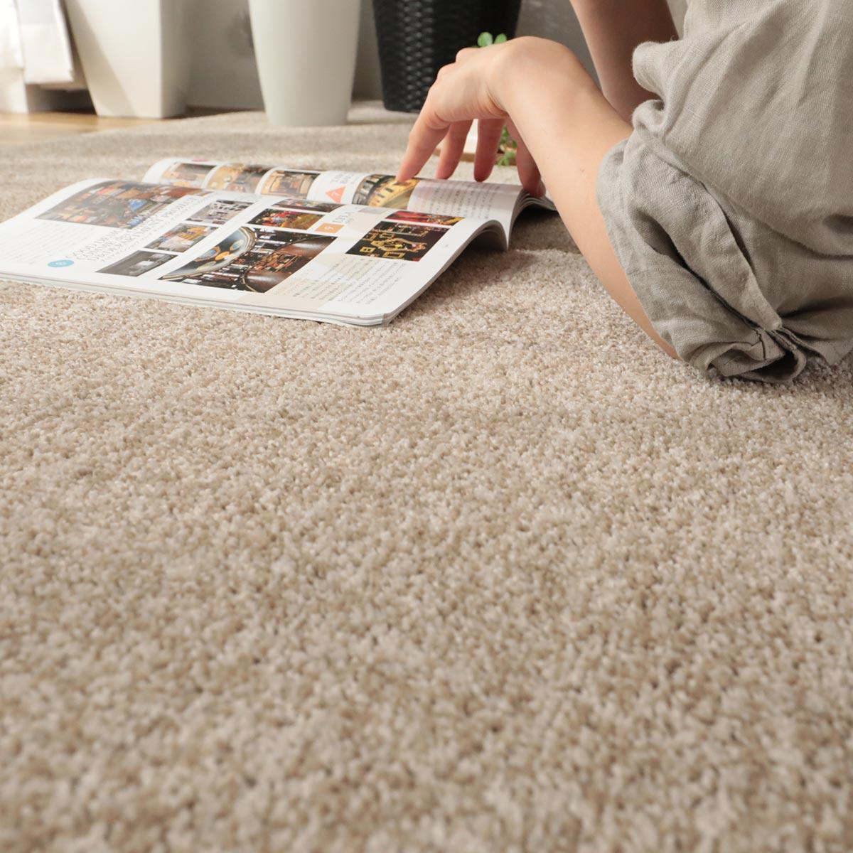 消臭・防ダニ・制菌防臭機能付ききカーペット『リデン』写真1
