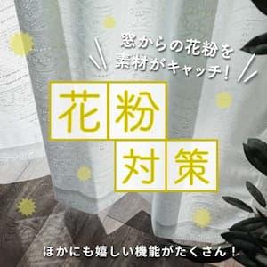 花粉レースカーテン
