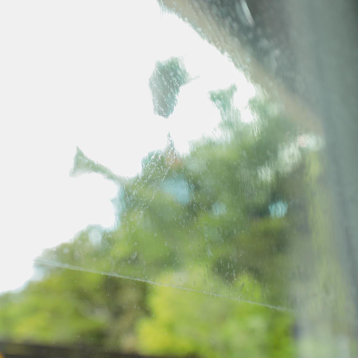 窓ガラスフィルム イメージ写真6
