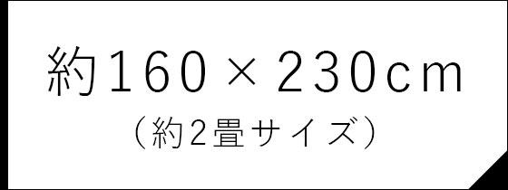 約160×230cm (約2畳サイズ)