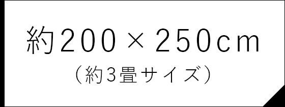 約200×250cm (約3畳サイズ)