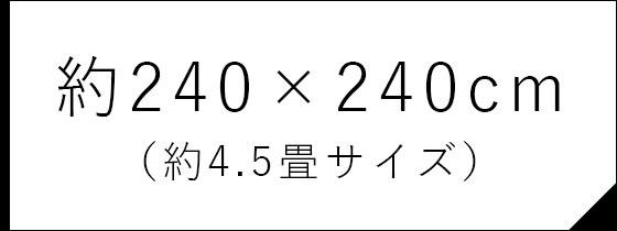 約240×240cm (約4.5畳サイズ)