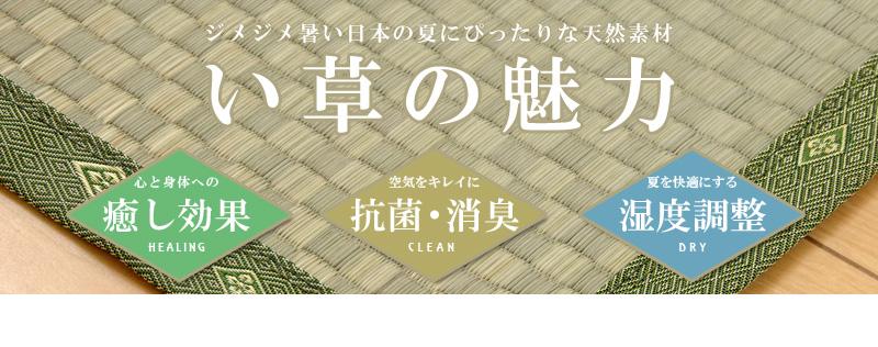 ジメジメ暑い日本の夏にぴったりな天然素材。い草の魅力。