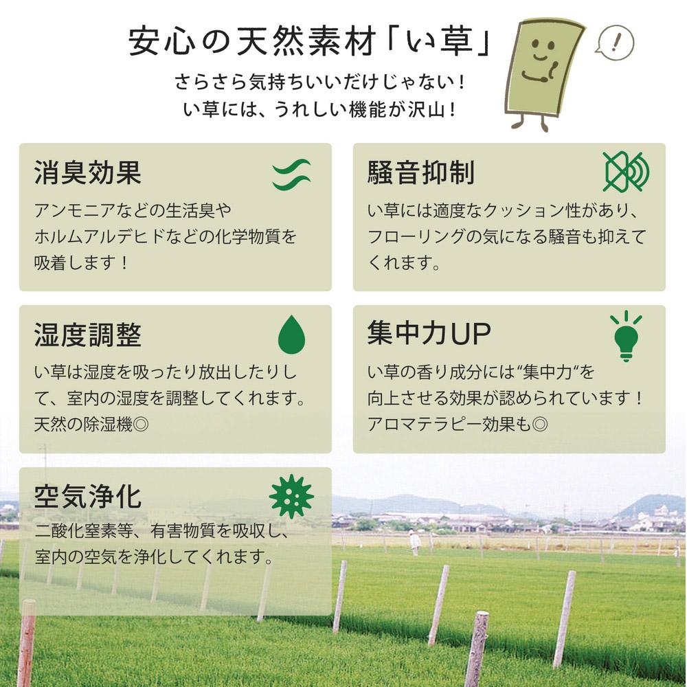 い草の特徴