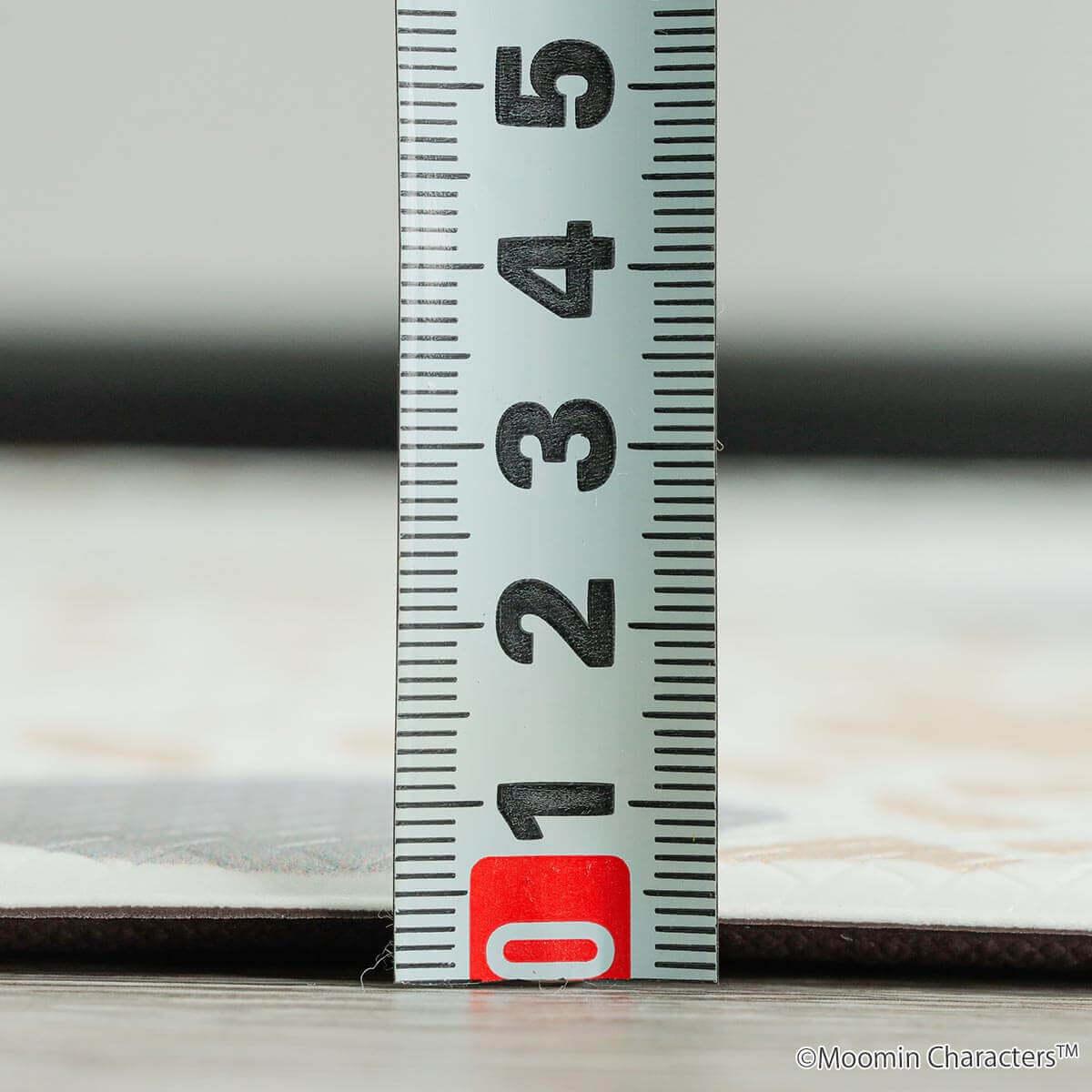 厚さ約6mmでクッション性があります。