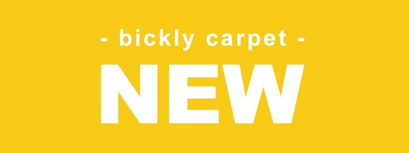 びっくりカーペット新商品コーナー