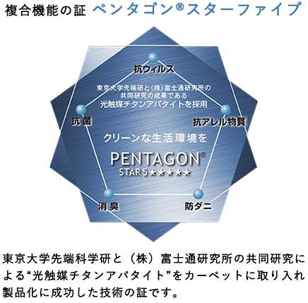 複合機能の証ペンタゴンスターファイブ