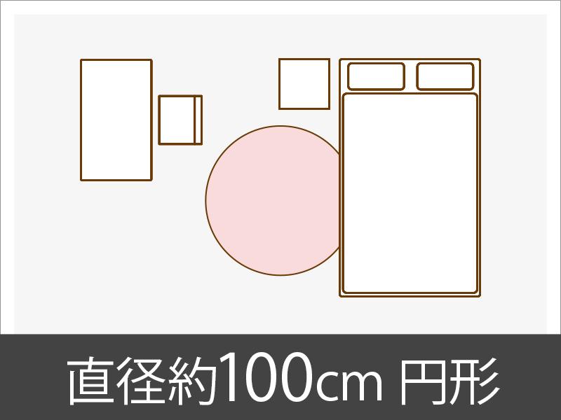 直径約100cm円形