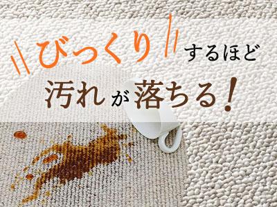 人気商品!びっくりするほど、汚れが良く落ちるカーペット!