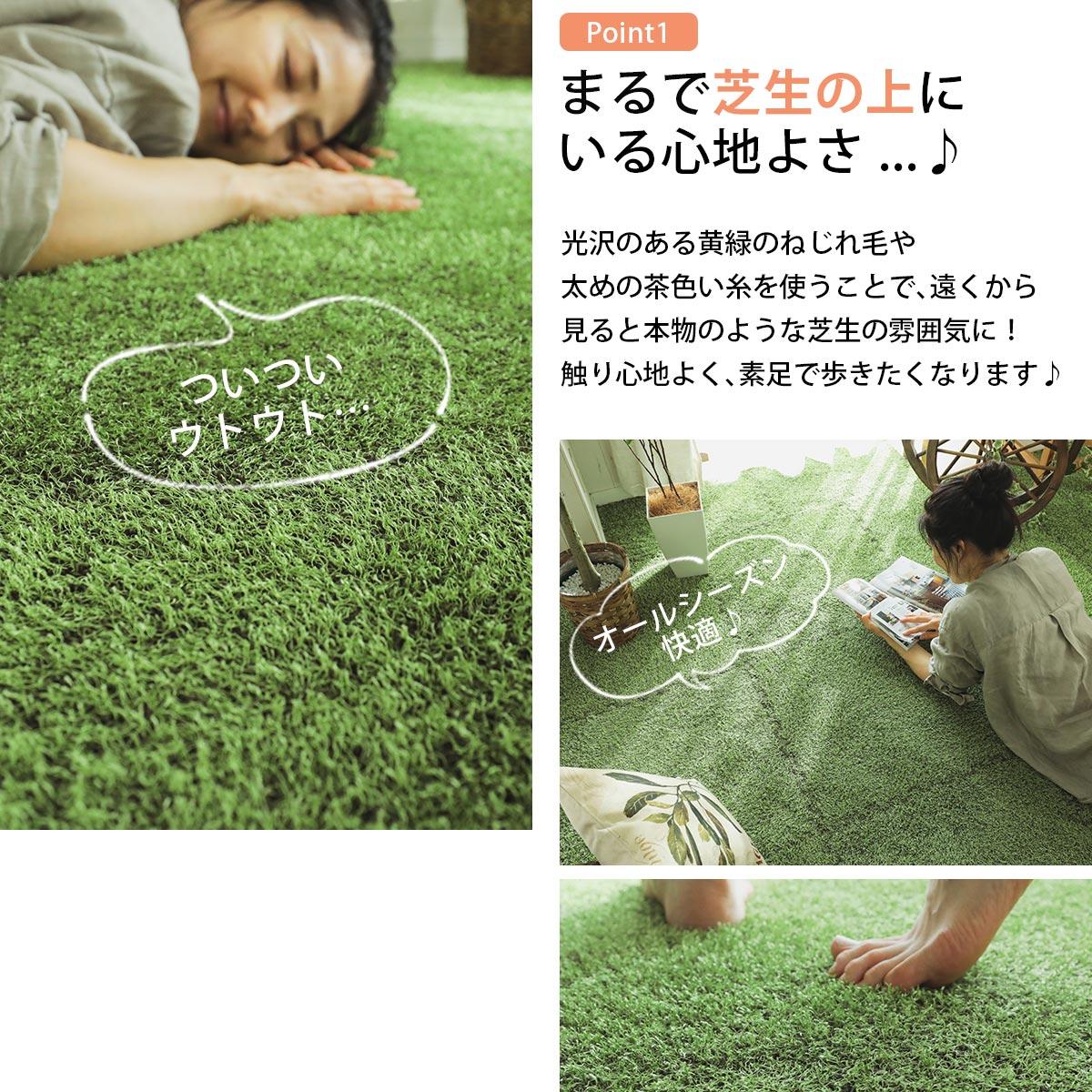 シバルン ポイント1 本物の芝生のようなカーペット