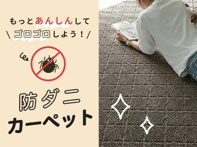 防ダニカーペット・絨毯